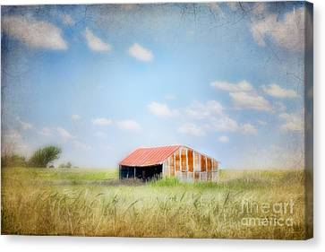 Canvas Print featuring the photograph The Meeting Place by Betty LaRue