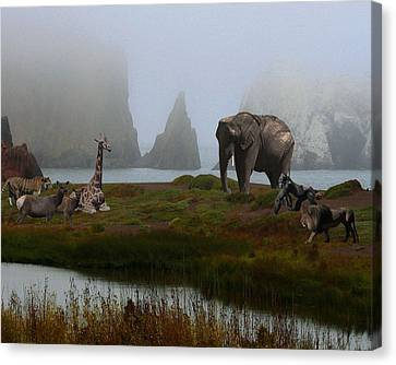 The Menagerie 2 Canvas Print by Wingsdomain Art and Photography
