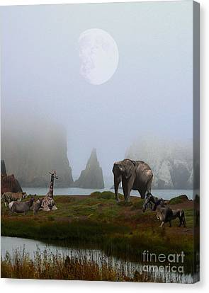 Bayarea Canvas Print - The Menagerie by Wingsdomain Art and Photography