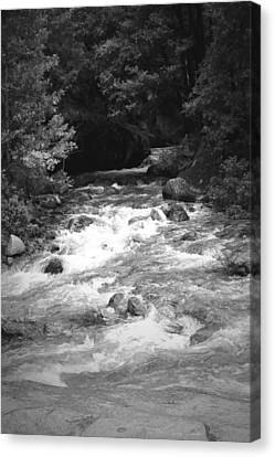 The Merced River At Yosemite Two B And W Canvas Print