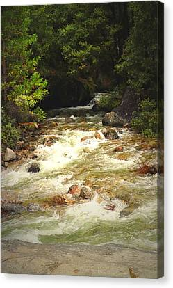 The Merced River In Yosemite Two  Canvas Print