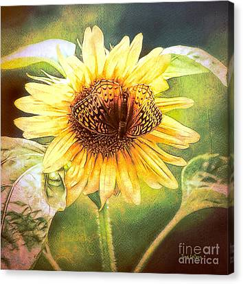 The Merge Canvas Print by Tina LeCour