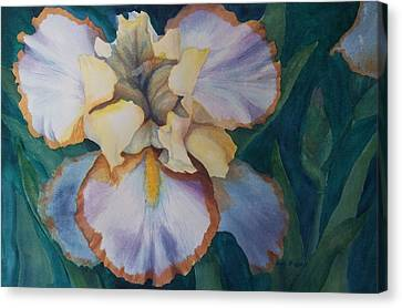 The Messenger Canvas Print by Becky Chappell