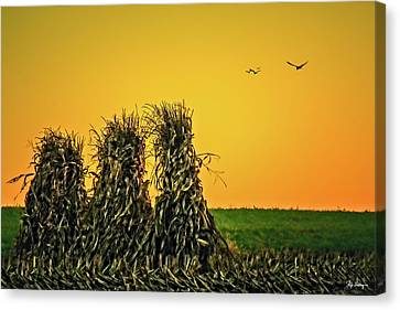 The Migration Of Summer Canvas Print by Skip Tribby
