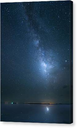 Canvas Print featuring the photograph The Milky Way And The Egret by Mark Andrew Thomas