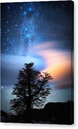 Wandering Star Canvas Print - The Milky Way by Ricardo La Piettra