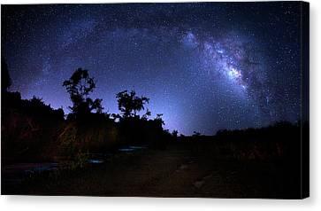 Beauty Mark Canvas Print - The Milky Way Trail by Mark Andrew Thomas
