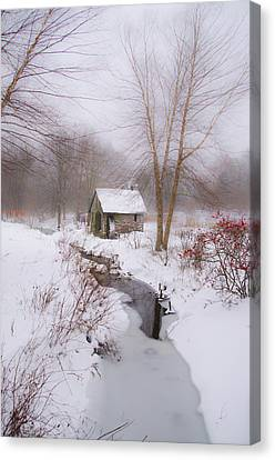 Philadelphia Phillies Canvas Print - The Mill And Creek At Morris Arboretum by Bill Cannon