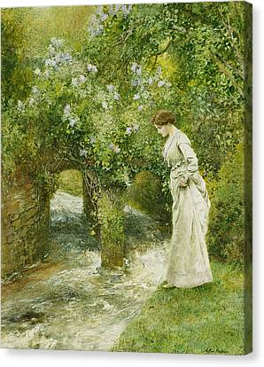 The Mill Stream In Spring Canvas Print by Arthur Hopkins