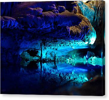 The Mirror Pool Canvas Print