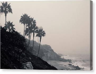 The Mists Of Laguna Beach Canvas Print