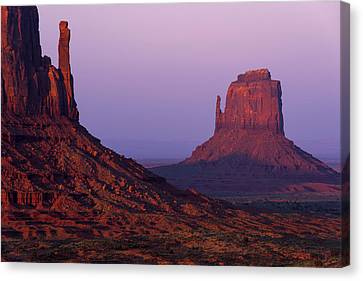 Canvas Print featuring the photograph The Mittens by Chad Dutson