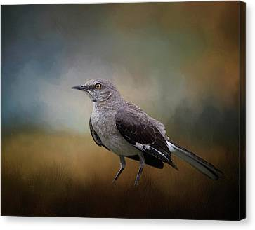 Canvas Print featuring the photograph The Mockingbird A Bird Of Many Songs by David and Carol Kelly
