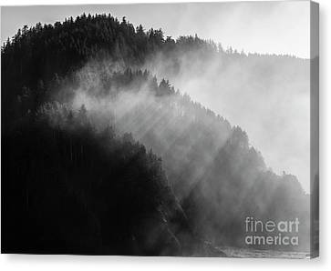 Crepuscular Rays Canvas Print - The Moment Created By Sunlight by Masako Metz