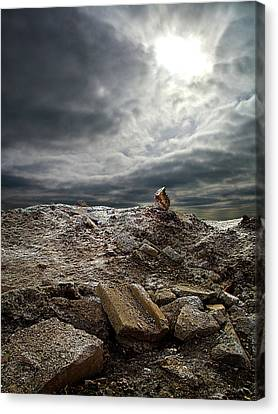 The Mount Canvas Print by Phil Koch