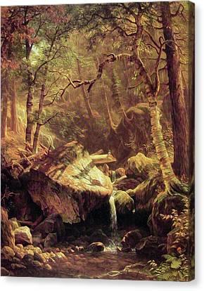 The Mountain Brook Canvas Print