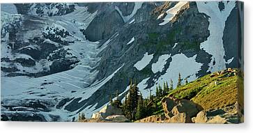 The Mountain Goat  Canvas Print