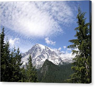 The Mountain  Mt Rainier  Washington Canvas Print by Michael Bessler