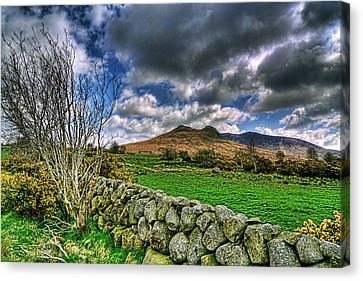 The Mournes Stone Walls Canvas Print by Kim Shatwell-Irishphotographer
