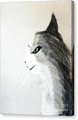 The Mouser Canvas Print by Scott D Van Osdol