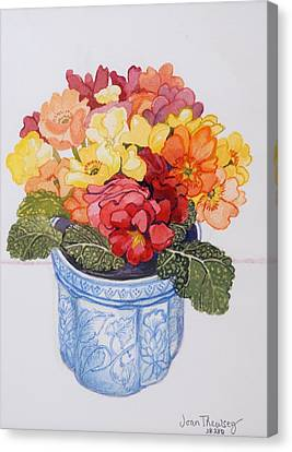 The Multicolored Primrose Canvas Print by Joan Thewsey