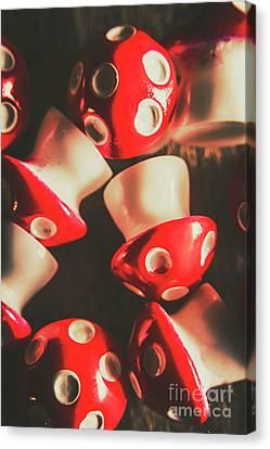 Fungi Canvas Print - The Mushroom Stack by Jorgo Photography - Wall Art Gallery