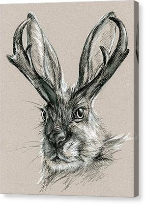 The Mythical Jackalope Canvas Print by MM Anderson
