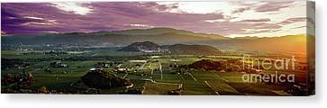 The Napa Valley Floor Canvas Print by Jon Neidert