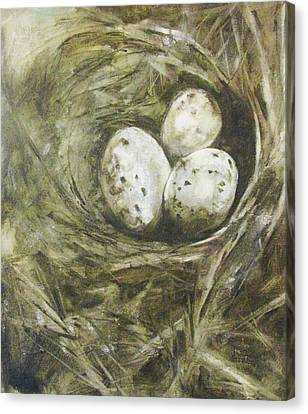 The Nest Canvas Print by Donna Thomas