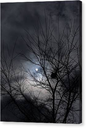 The Nest I Canvas Print