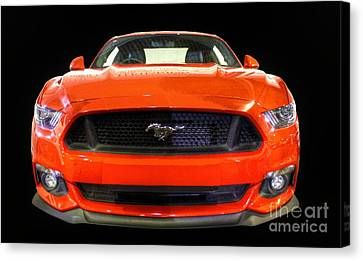 The New Mustang Canvas Print by Vicki Spindler