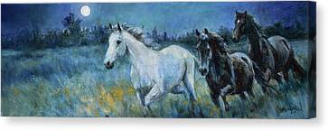 Wild Horse Canvas Print - The Night Horses by Tracie Thompson