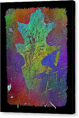 The Oak Leaf Canvas Print