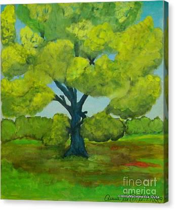 The Oak Tree In The Spring Canvas Print by Anna Folkartanna Maciejewska-Dyba