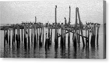 The Old Cedar Key Pier Canvas Print by David Lee Thompson