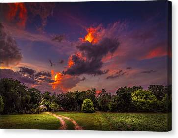 Barbed Wire Canvas Print - The Old Country Road by Marvin Spates