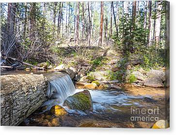 Canvas Print featuring the photograph The Old Creek Falls by Anthony Citro
