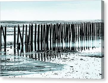 The Old Docks Canvas Print