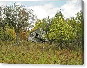 The Old Homestead And Orchard Canvas Print by Michael Peychich