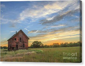 Haybales Canvas Print - The Old Homestead  by Robert Bales