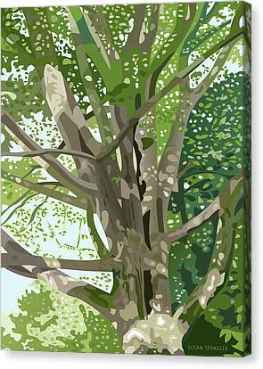 The Old Oak Canvas Print