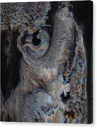 The Old Owl That Watches Canvas Print by ISAW Gallery