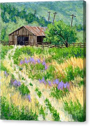 The Old Road To The Old Shed Canvas Print by David King