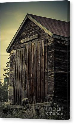 The Old Shed Canvas Print by Lisa Killins