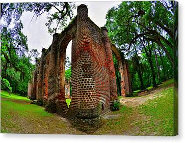 The Old Sheldon Church Ruins 4 Canvas Print by Lisa Wooten