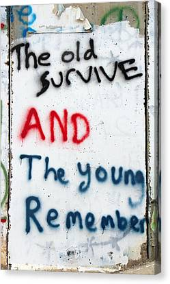 The Old Survive Canvas Print