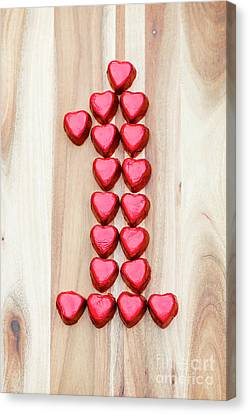 The One Of Hearts Canvas Print by Anne Gilbert