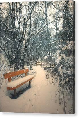 The Orange Bench Canvas Print by Tara Turner