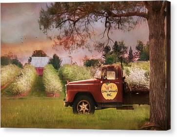 The Orchard Truck Canvas Print by Lori Deiter