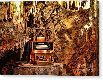 The Organ In Luray Caverns Canvas Print by Paul Ward